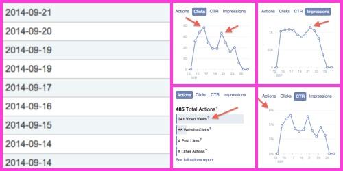 Dubli FB Ads Results